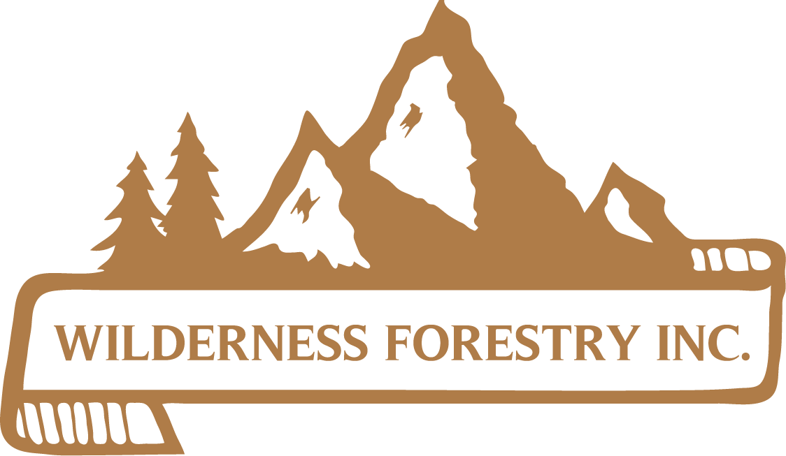 Wilderness Forestry Reno, NV
